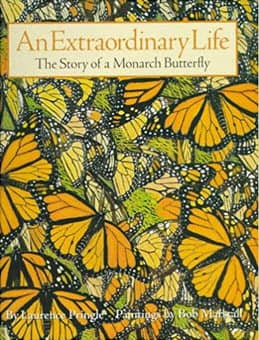 An extraordinary life of a Monarch butterfly